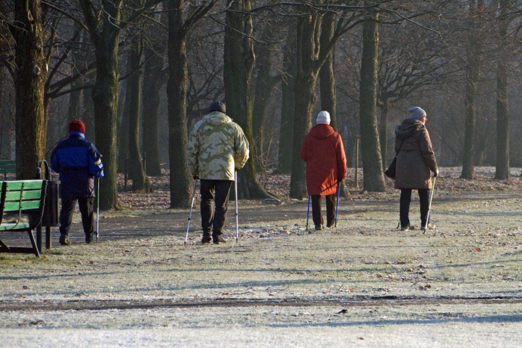 trening nordic walking w Łodzi